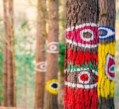 Bizkaia Enamora – Bosque Pintado de Oma