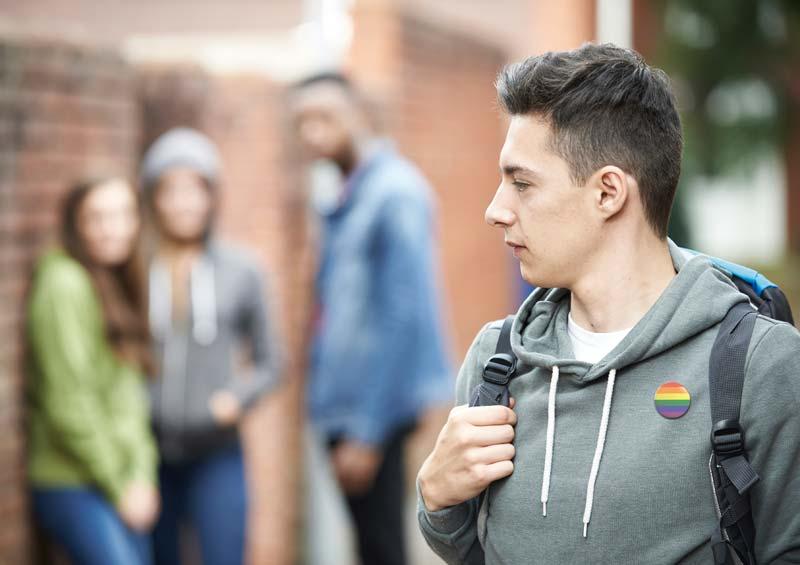 Berdindu. Homofobia euskal eskoletan / Homofobia en los colegios vascos